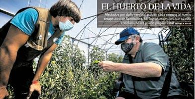Terapia horticola huerteco