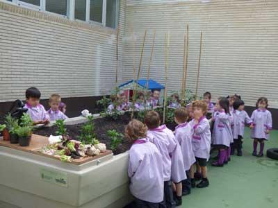 Huertos escolares, educacion ambiental en Burgos