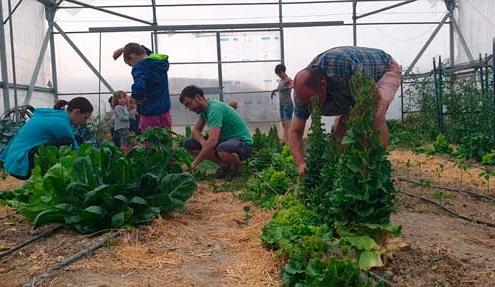 Voluntariado ecológico Burgos