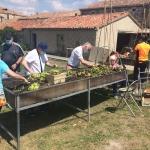 Terapia hortícola en mesa de cultivo adaptada